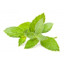 Spearmint pure and natural essential oil SP92060 1 KG