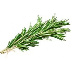 Rosemary pure and natural essential oil RO91430 1 KG